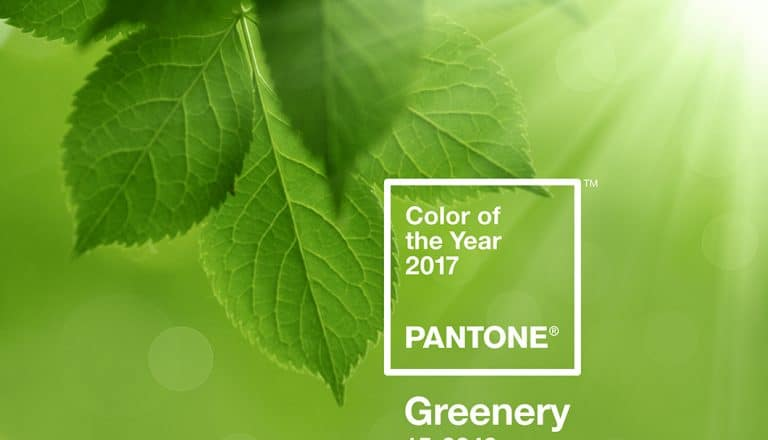 Pantone Colour of 2017